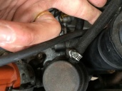 Fuel line into the Fuel Pump Inlet